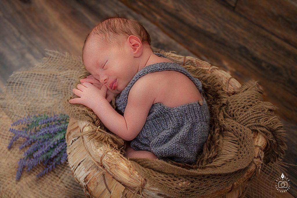 fotografisanje beba Novi Sad